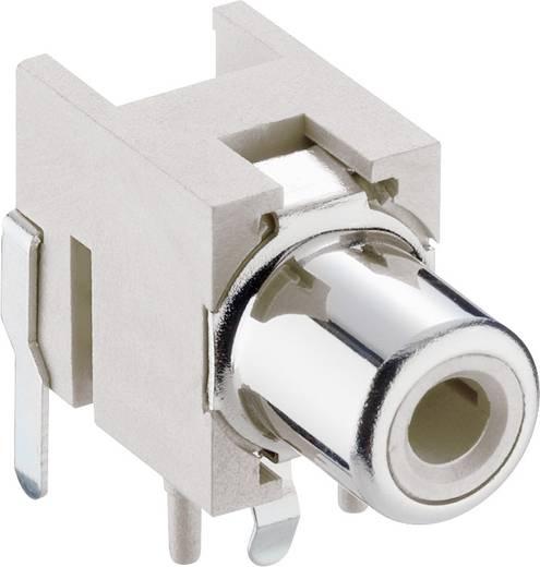 RCA csatlakozó alj, beépíthető, vízszintes, fehér Lumberg 1553 02 fehér