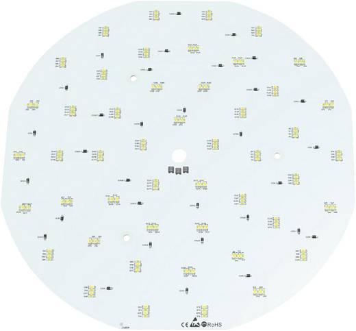 LED modul, fehér, 23,04 W 1543 lm 120 ° 24 V, Barthelme 50762530