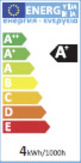 LED-es fényforrás, 103 mm 230 V E14 3.6 W = 25 W Melegfehér, Renkforce,