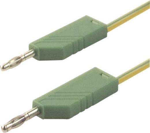 Mérőzsinór, mérővezeték 2db 4mm-es toldható banándugóval 2,5 mm² PVC, 1m sárga/zöld SKS Hirschmann CO MLN 100/2,5