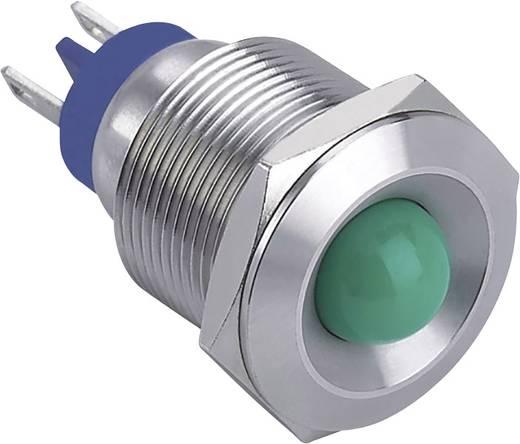 LED-es jelzőlámpa, Zöld 12 V GQ19B-D/J/G/12V/S