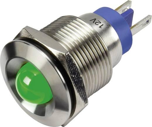 LED-es jelzőlámpa, Zöld 12 V GQ19B-D/G/12V/S