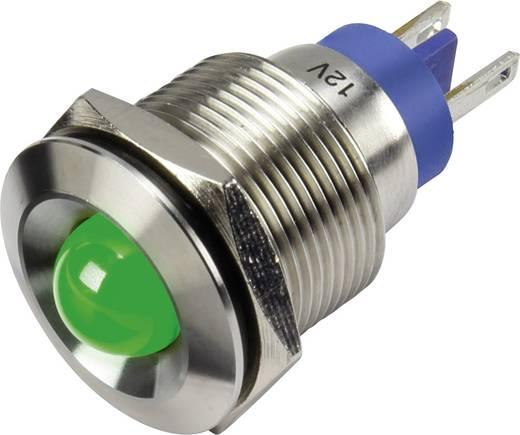 LED-es jelzőlámpa, Zöld 12 V GQ19B-D/J/G/12V/N