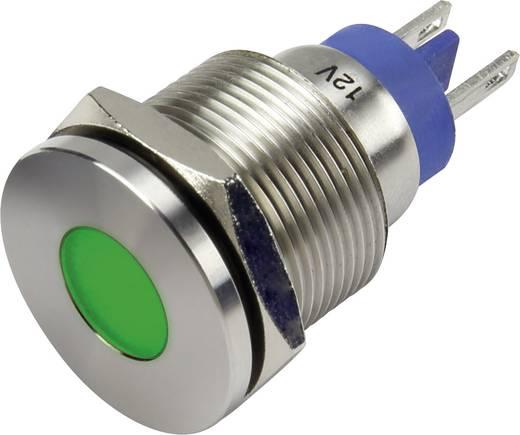 LED-es jelzőlámpa, Zöld 12 V GQ19F-D/G/12V/N