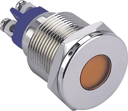 LED-es jelzőlámpa, Fehér 12 V GQ19F-D/W/12V/N