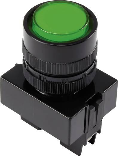 LED-es jelzőlámpa, Zöld 12 V Y090E-DS/G/12V