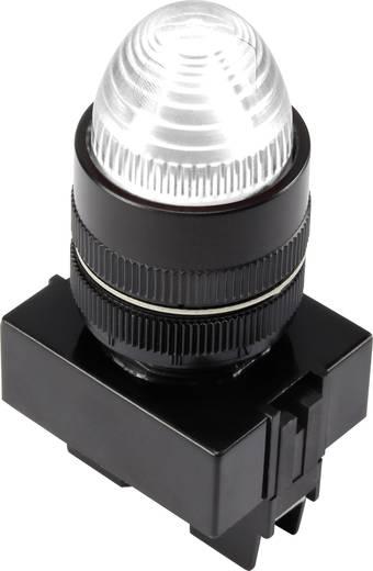 LED-es jelzőlámpa, Fehér 12 V Y090E-BDS/W/12V