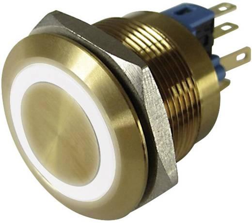 Vandálbiztos nyomógomb 250 V/AC 3 A 1 x KI/(BE) Conrad GQ22-11E/W/12V/G IP65