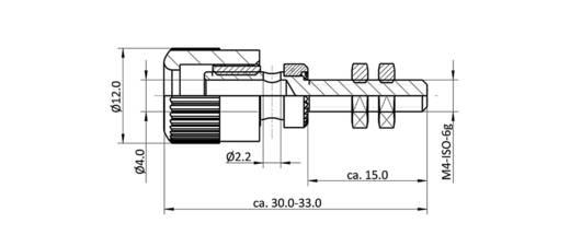 Labor csatlakozóaljzat, fekete, 6 A, econ connect AK4SW