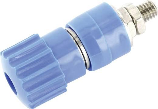 Labor csatlakozóaljzat, kék, 25 A, econ connect AK7BL