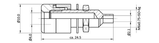 Labor csatlakozóaljzat, beépíthető, függőleges, 4 mm, kék, econ connect TB4BL