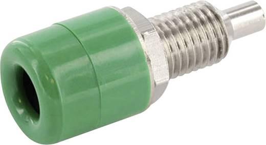 Labor csatlakozóaljzat, beépíthető, függőleges, 4 mm, zöld, econ connect TB4GN