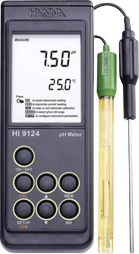 Hanna Instruments HI 9124 ipari pH és ORP mérő