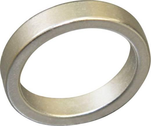Tartós mágnes gyűrű NdFeB, kerethőmérséklet max. 150 °C, TERRAMAG® H-N 40/150
