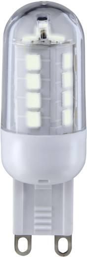 LED-es fényforrás Sygonix LED G9 3W=25W melegfehér, EEK: A+, stiftforma, áttetsző