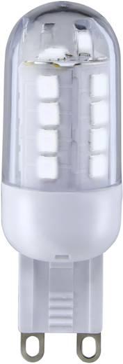 LED-es fényforrás Sygonix LED G9 3W=25W hidegfehér, EEK: A+, stiftforma, áttetsző