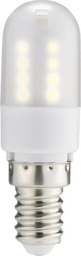 LED izzó, rúd forma, 70 mm 230 V E14 2,5 W = 25 W melegfehér A+, sygonix