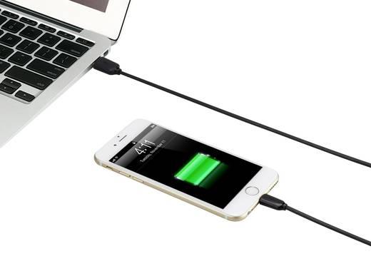Apple Lightning töltőkábel iPhone iPod iPad adatkábel, kétoldalasan használható USB-A dugóval, 1m fekete Renkforce