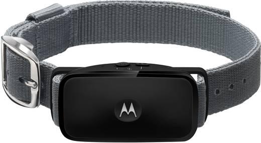 Ultrahangos ugatásgátló, Motorola Bark 200U MR-EU