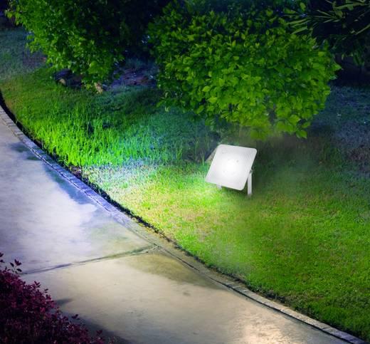 LED-es kültéri fényszóró 30 W Hidegfehér Renkforce
