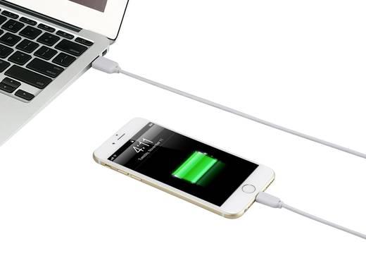 Apple Lightning töltőkábel iPhone iPod iPad adatkábel, kétoldalasan használható USB-A dugóval, 1m fehér Renkforce