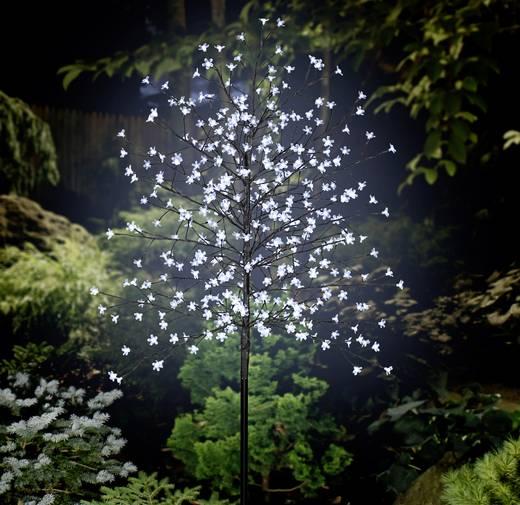 LED-es fa cseresznyevirágokkal, barna, Polarlite PCA-03-003