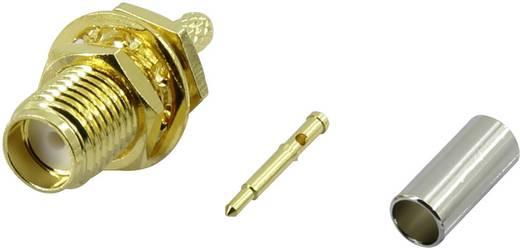 Krimpelhető, beépíthető SMA alj, függőleges 50 Ω Conrad SMA-KC-RG174