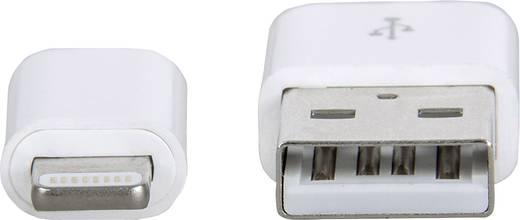 iPod/iPhone/iPad Adatkábel/Töltőkábel [1x USB 2.0 dugó, A típus - 1x Apple