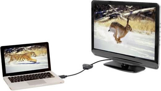 DisplayPort elosztó kábel [1x DisplayPort dugó - 2x DisplayPort alj] fekete, renkforce