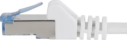RJ45 patch kábel, hálózati LAN kábel, hajlékony, tűzálló CAT 6A S/FTP 0,25 m szürke, Renkforce