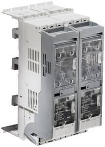 Biztonsági terhelés leválasztó modul Poliamid Szürke (Sz x Ma) 53 mm x 213 mm Rittal SV 3431.020 1 db Rittal