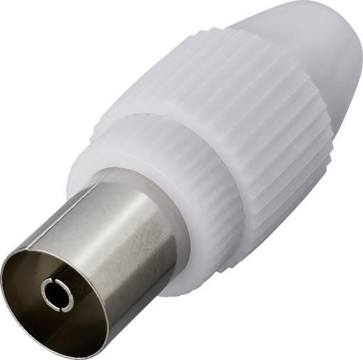 Koax alj, műanyag, renkforce 0800302