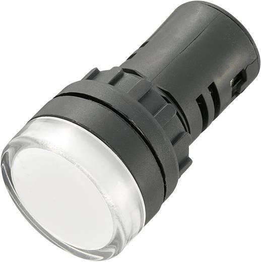 LED-es jelzőlámpa 12 V, Ø 29 mm, fehér, AD16-22DS/12V/W