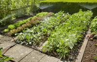 Gardena csepegtető öntöző indulókészlet, virág és növényágyásokhoz 25 m Gardena Micro-Drip-System (13015) GARDENA