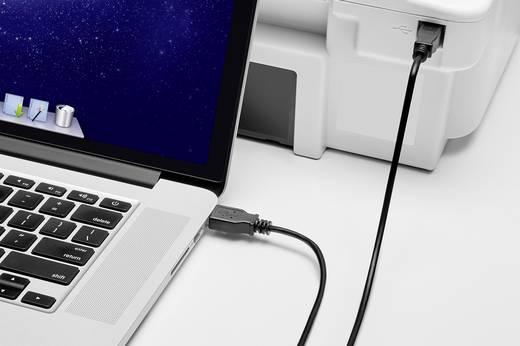 USB 2.0 csatlakozókábel, 1x USB 2.0 dugó A - 1x USB 2.0 dugó B, 0,3 m, fekete, aranyozott, renkforce