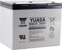 Yuasa REC80-12 YUAREC8012 Ólomakku 12 V 80 Ah Ólom-vlies (AGM) (Sz x Ma x Mé) 259 x 212 x 168 mm M6 csavaros csatlakozó Yuasa