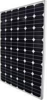 Monokristályos napelem modul 130 Wp 24 V Phaesun Sun Peak SPR 130 Phaesun
