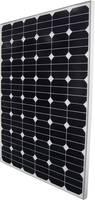 Monokristályos napelem modul 140 Wp 24 V Phaesun Sun Peak SPR 140 Phaesun