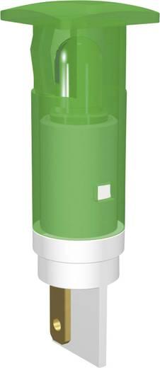 Szimbólumos jelzőlámpa 230 V, Ø 10 mm, ultra zöld, kör, Signal Construct SKGU10728