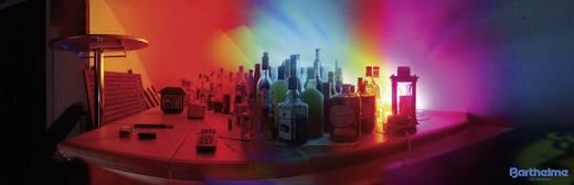 LED szalag, forrasztható, 24 V 16,8 cm, borostyán, Barthelme LEDlight flex 14 50017422