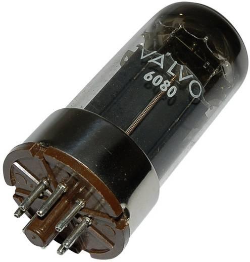 Elektroncső 6080 = 6 A S 7 W, pólusszám 8, oktál foglalat, Végtrióda