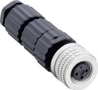 Összeállítható M8-as csatlakozó, az érzékelő rendszerhez (MiniQuick) Fekete Hirschmann ELKA 3008 V Kivitel egyenes (Ø Hirschmann