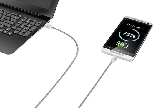 USB 2.0 kábel, 1x USB 2.0 dugó A - 1x USB C dugó, 1 m, ezüst, Renkforce