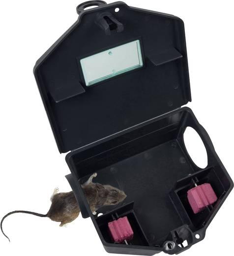 Patkánycsapda, Gardigo Bait box