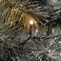 Konstsmide 6544-870 Karácsonyfa világítás, alkalmazás vezérléssel Kültérre Hálózatról üzemeltetett Fényforrások száma Konstsmide