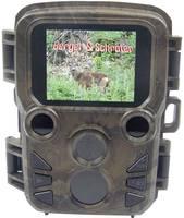 Berger & Schröter Mini Vadmegfigyelő kamera 16 Megapixel Fekete LED-ek, Low Glow LED-ek, Felgyorsított felvétel funkció Berger & Schröter