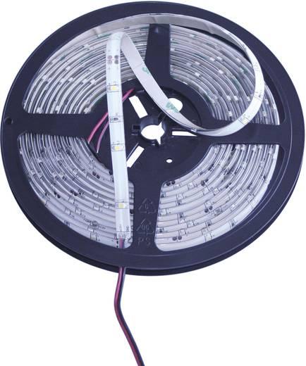 Általános LED csík, öntapadó, 5 m, kiöntött kivitel 12 V/DC, borostyán