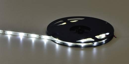 Általános LED csík, öntapadó, 5 m, kiöntött kivitel 12 V/DC, hidegfehér