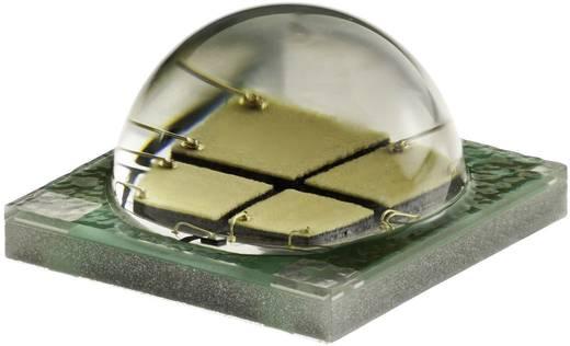 Cree XLamp XM-L EZW LED csillag lapon 300 lm, 115°, EasyWhite 4-Step, CREE XMLEZW-00-STAR-0B0HU230F