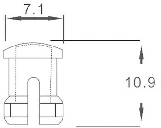 Átlátszó bepattintós sapka 5 mm-es LED-ekhez, előlapi szereléséhez, EDK-1C-PCW
